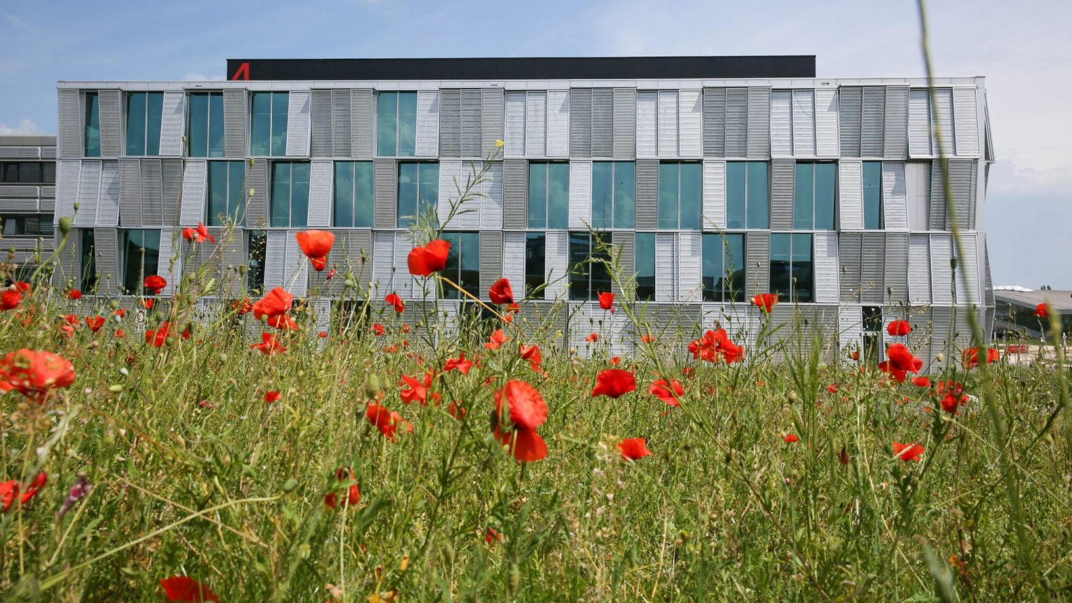 One of EPFL Sustainability objectives is to adapt the campus to climate change, while controlling energy consumption, improving well-being and promoting biodiversity.