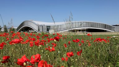 Vue du Rolex Learning center. Au premier plan, un champ de coquelicots