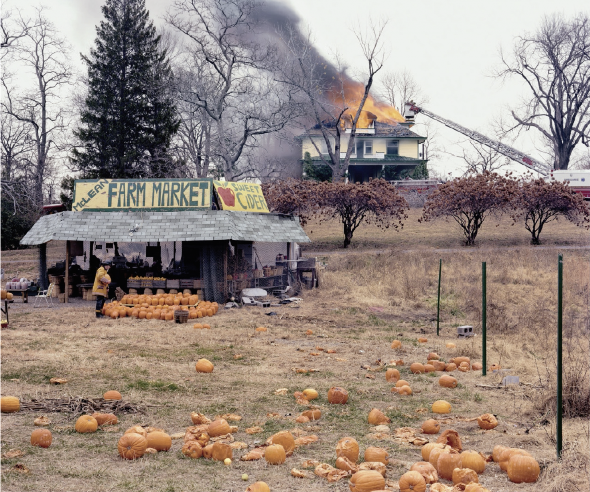 Joel Sternfeld, The Present Environmental Predicament, from the series American Prospects, 1987