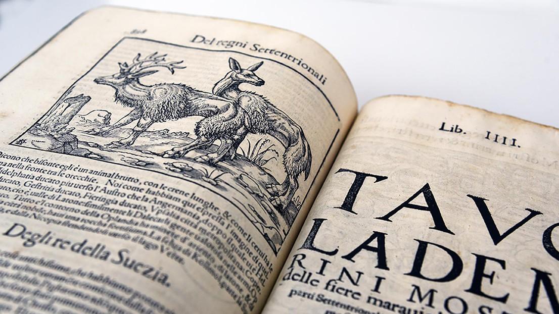 Rare books – Library
