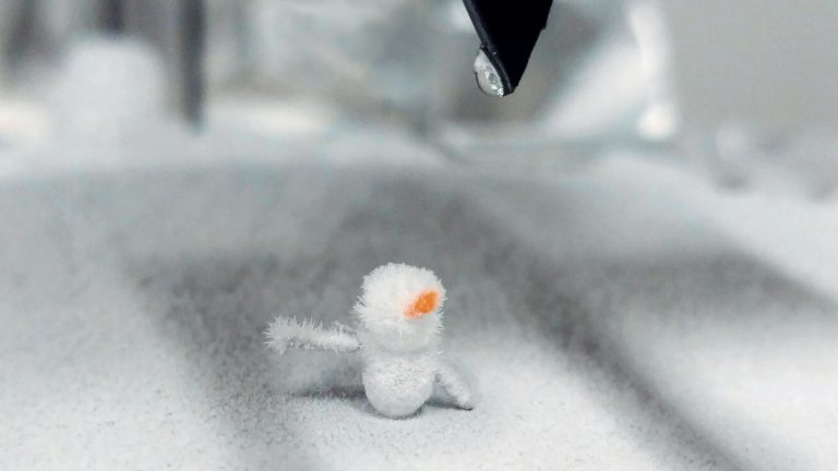 Un mini-bonhomme de neige de laboratoire