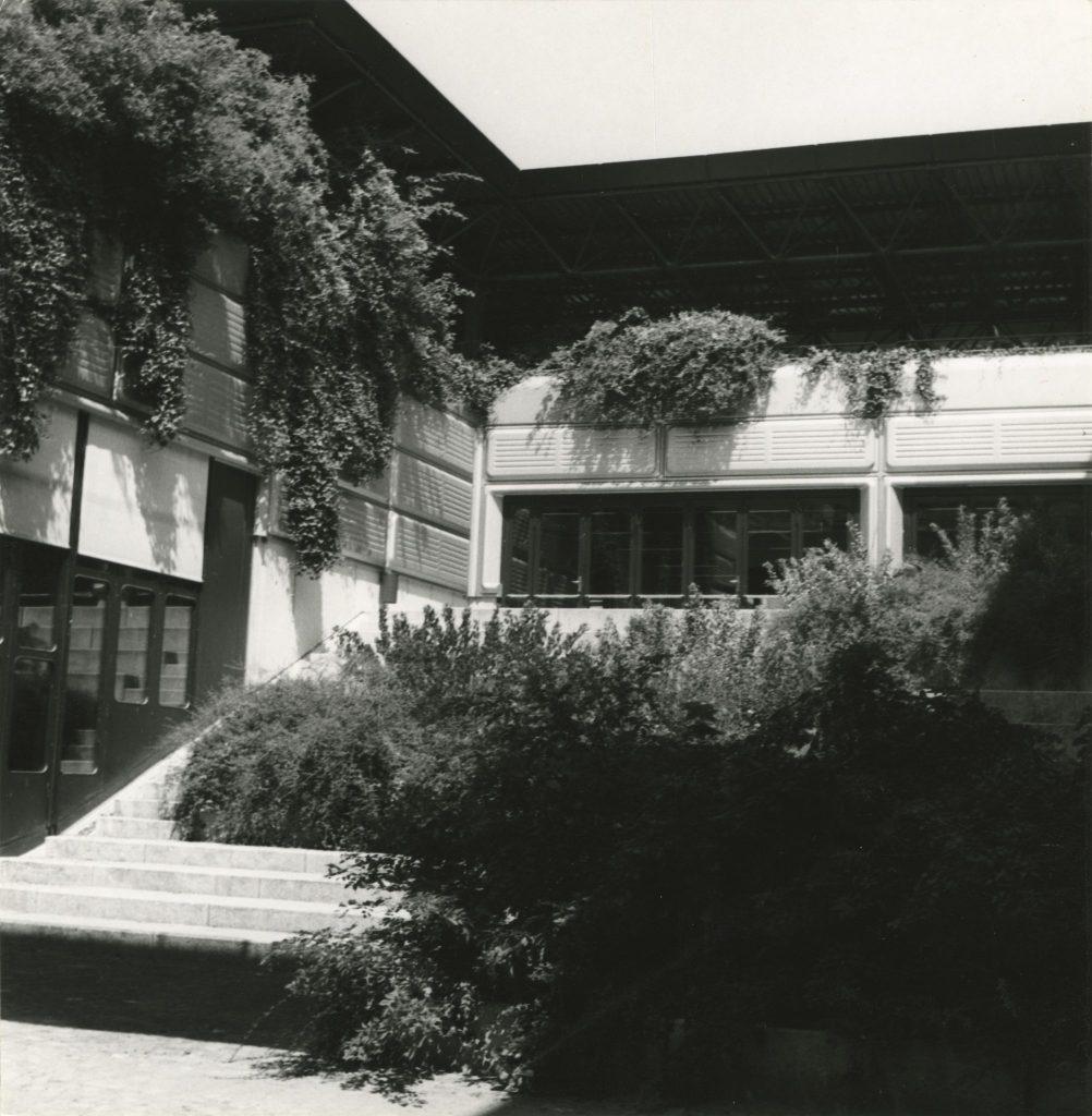 Photographie en noir et blanc d'une cour avec gradins se situant à côté d'un auditoire. On y voit une végétation abondante.