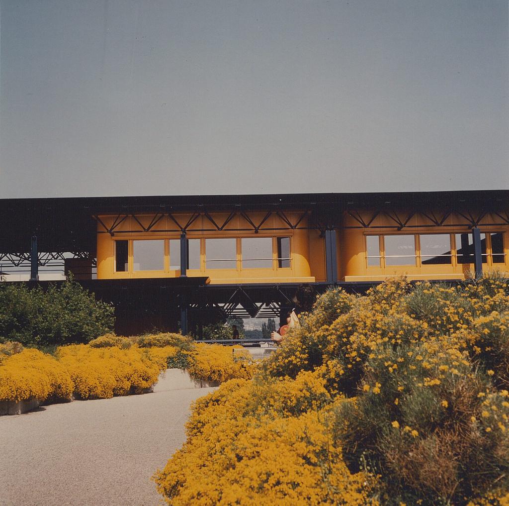 Photographie des terrasses de l'EPFL. Les fleurs orange débordent abondamment des bacs et leur couleur se confond avec celle de la façade.
