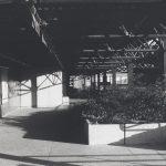 Photographie en noir et blanc d'un passage couvert sur les terrasses où se trouve un bac rectangulaire en béton qui contient des plantes.