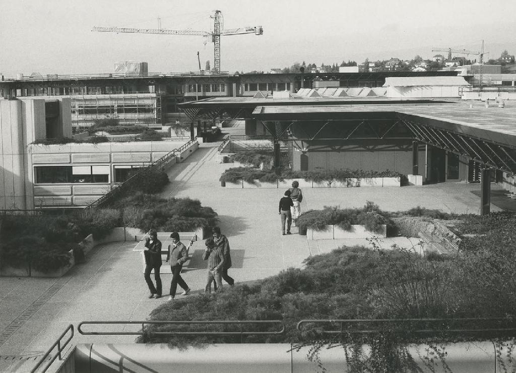 Niveau public de l'EPFL, caractérisé par la végétation, les terrasses et les zones de détente dédiés aux usagères et usagers.