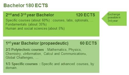Bsc Program Structure