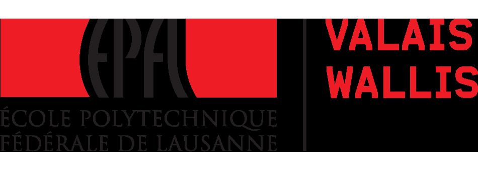 EPFL Logo VS