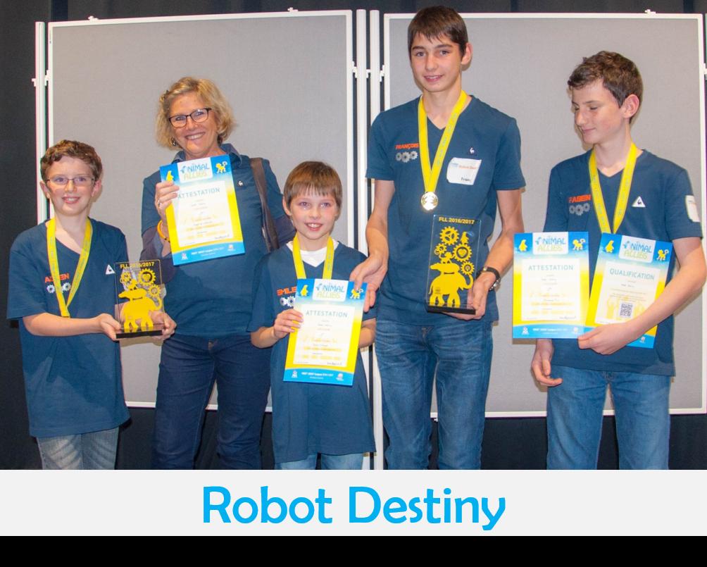 Robot Destiny