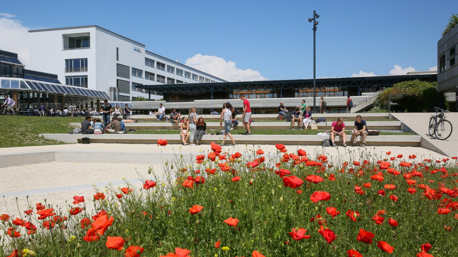 Etudes – École polytechnique fédérale de Lausanne