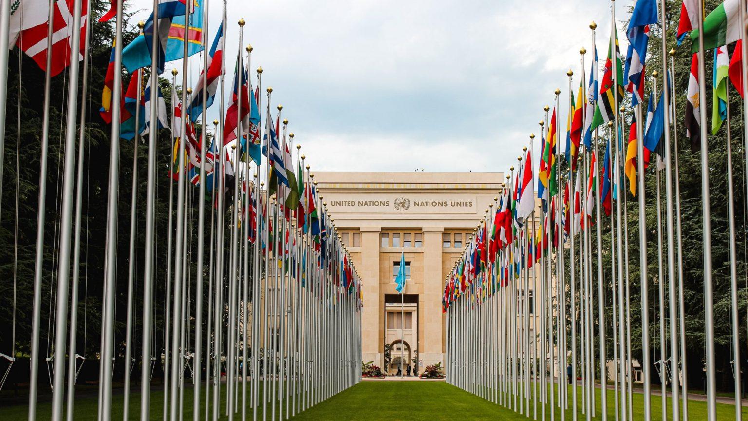 NGO Geneva