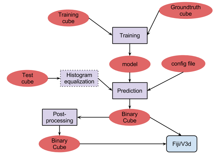 Fiji Plugin for the Analysis of Electron Microscopy Data – CVLAB