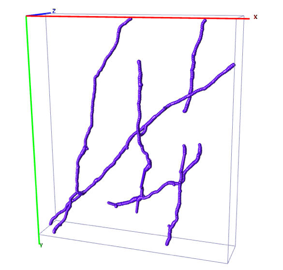 A neuron reconstruction obtained after annotating 100 samples selected randomly