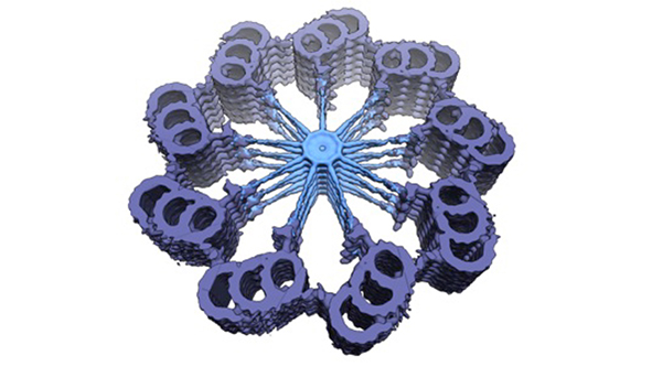 Slightly tilted cross-sectional 3D map of the proximal region of the centriole in Trichonympha ssp., illustrating the striking 9-fold radial symmetry of the organelle. The cartwheel structure with stacks of SAS-6-bearing rings is visible in light blue, the more peripheral pinhead element in dark blue. The most peripheral microtubule triplets and the A-C linker connecting are shown in purple. The cross-sectional diameter is ~250 nm. See Guichard et al., 2013. © EPFL - Gönczy Lab