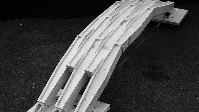 timber plate parametric vault design