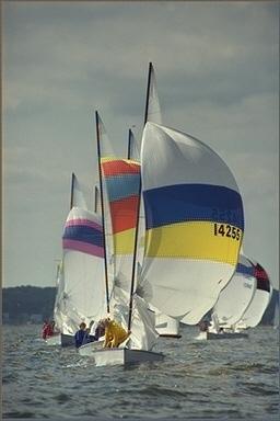 Sails result
