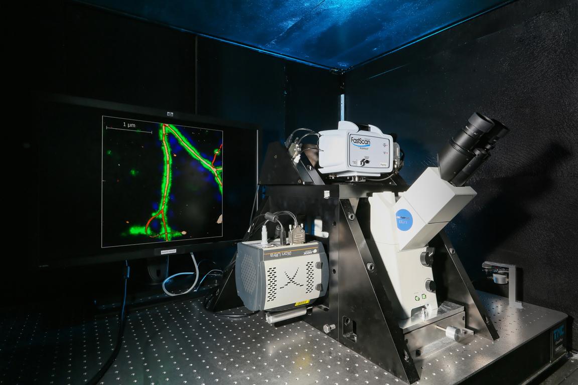 Combined AFM-optical microscopy system.