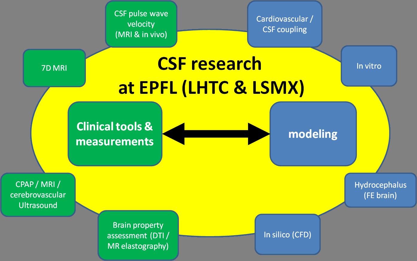 Cerebrospinal fluid mechanics – LHTC