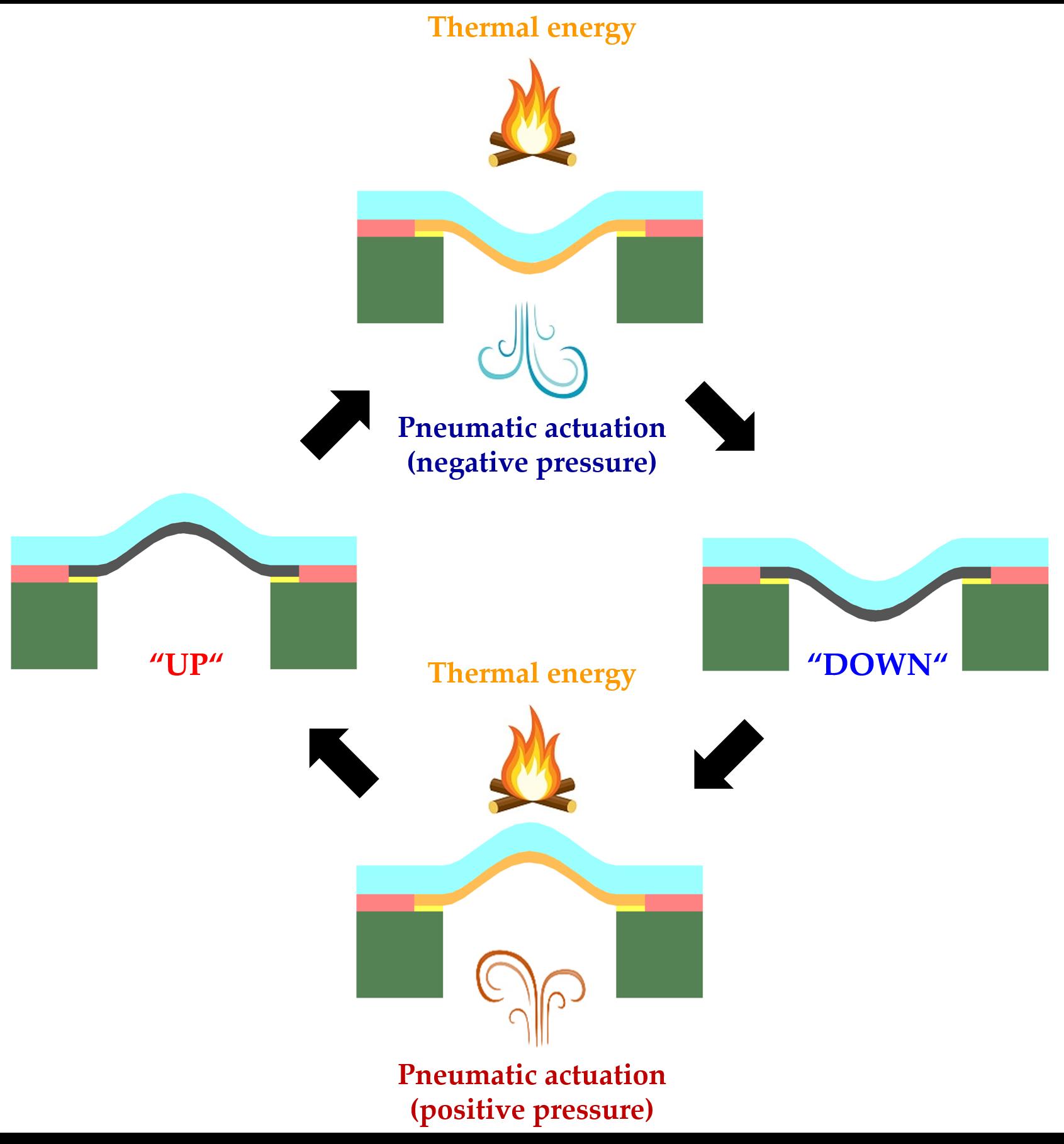Shape Memory Polymer taxels – EPFL-LMTS