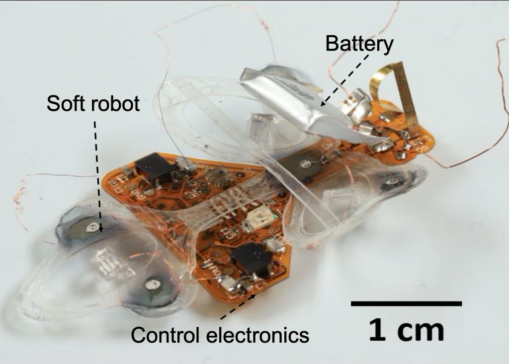 DEAnsect - мягкий робот-насекомое