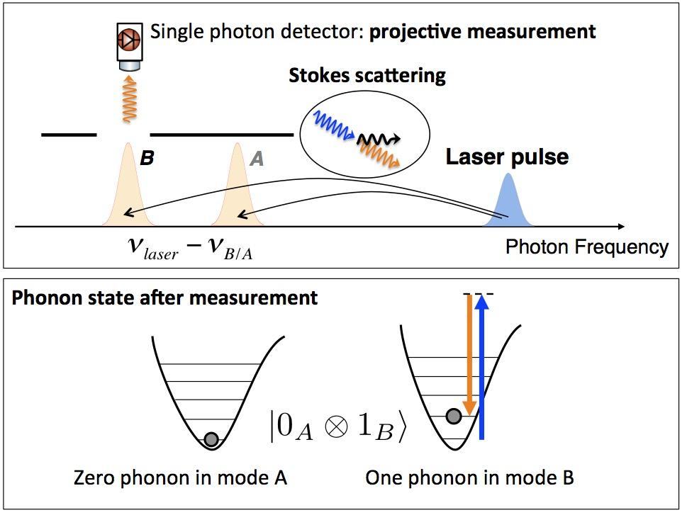 Vibrational quantum dynamics – LQNO