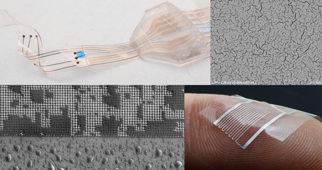 LSBI – Laboratory for Soft Bioelectronic Interfaces