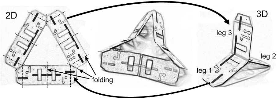 Folding design and assembly