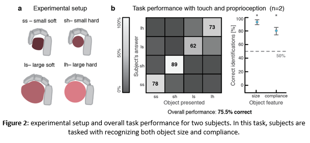 Sensory feedback and Prosthesis Control in Upper-limb