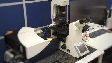 Leica SP8 invert microscope