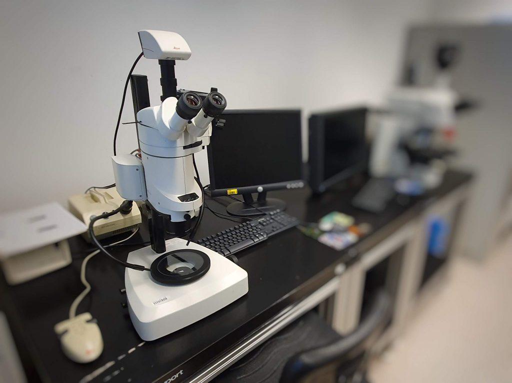 Leica Stereomicroscope