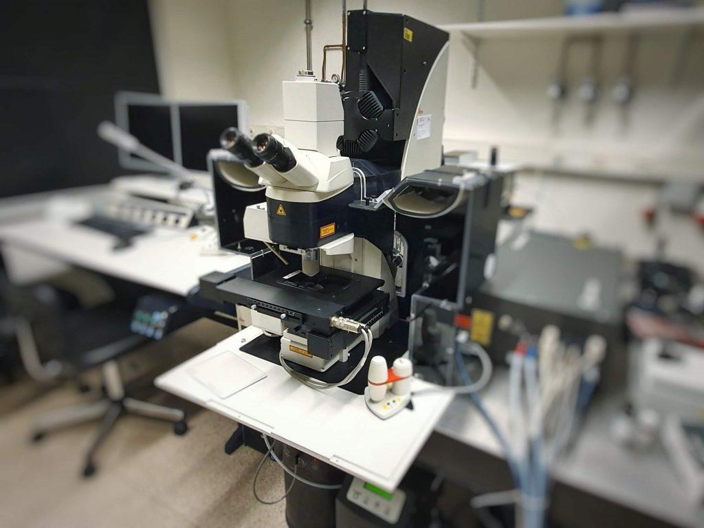 Leica SP5 2-Photon Microscope