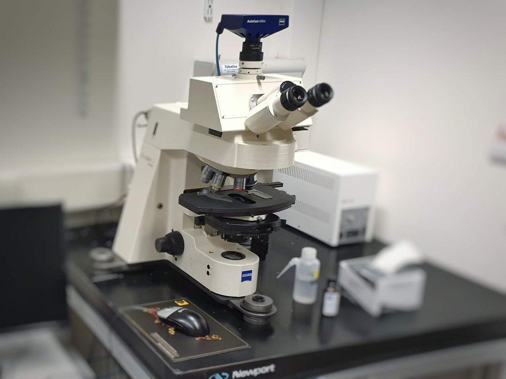 Zeiss Axioplan Microscope