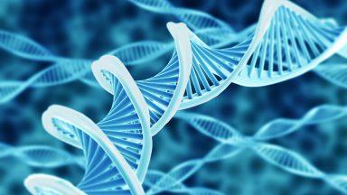 gene facility epfl