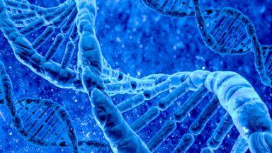 Bertarelli Foundation Gene Therapy Facility